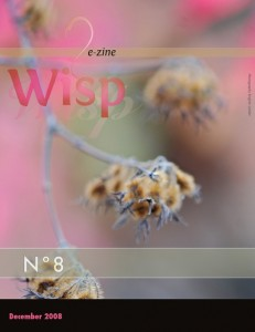 Wisp-08-20081208_Page_01.preview
