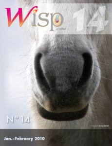 Wisp-14-201002-cover.preview