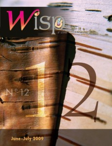 Wisp-12-20090613-cover.preview